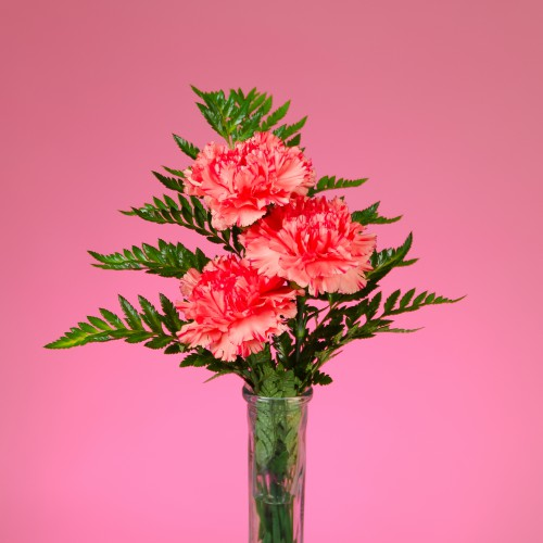 3 Carnation Bud Vase Gift Shop St John Medical Center